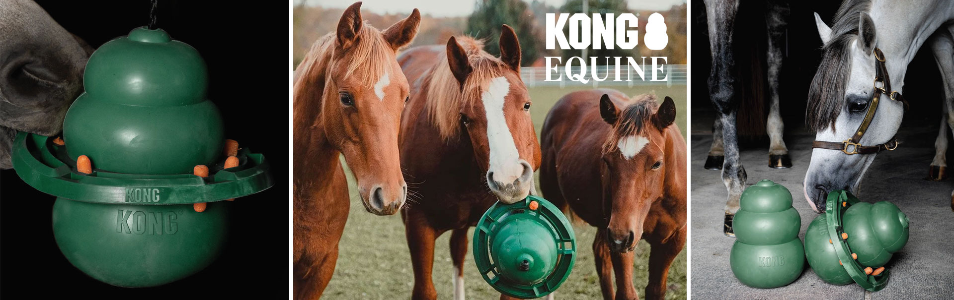 Kong Equine