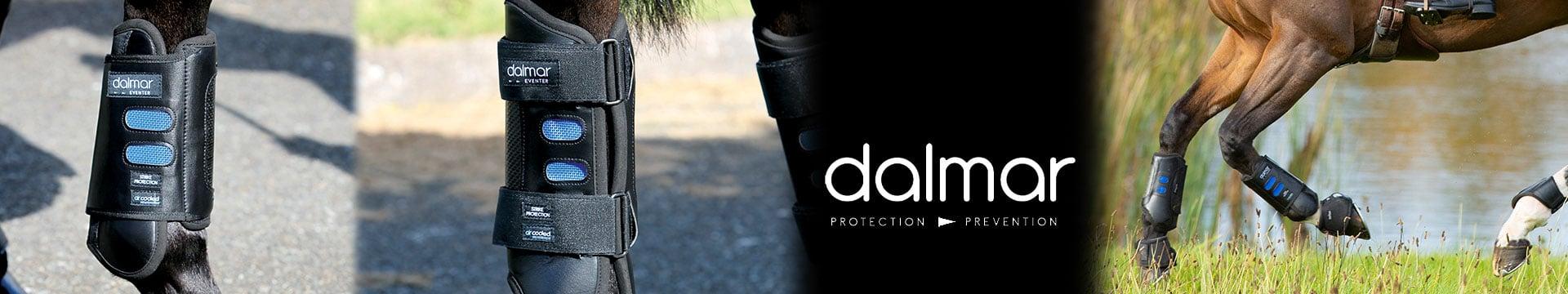 Dalmar by Horseware
