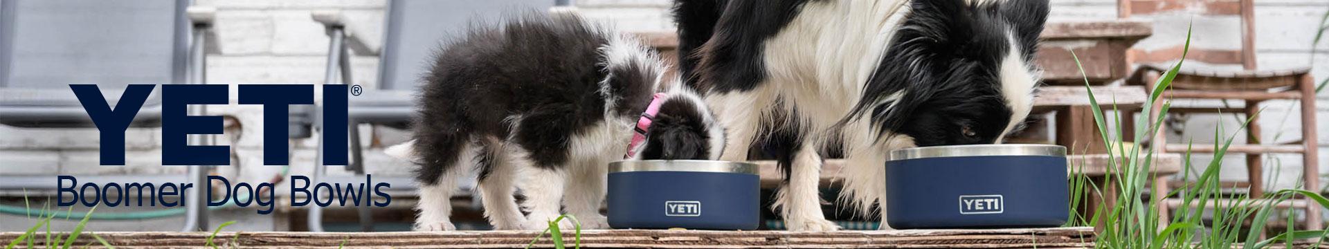 YETI Boomer Dog Bowl