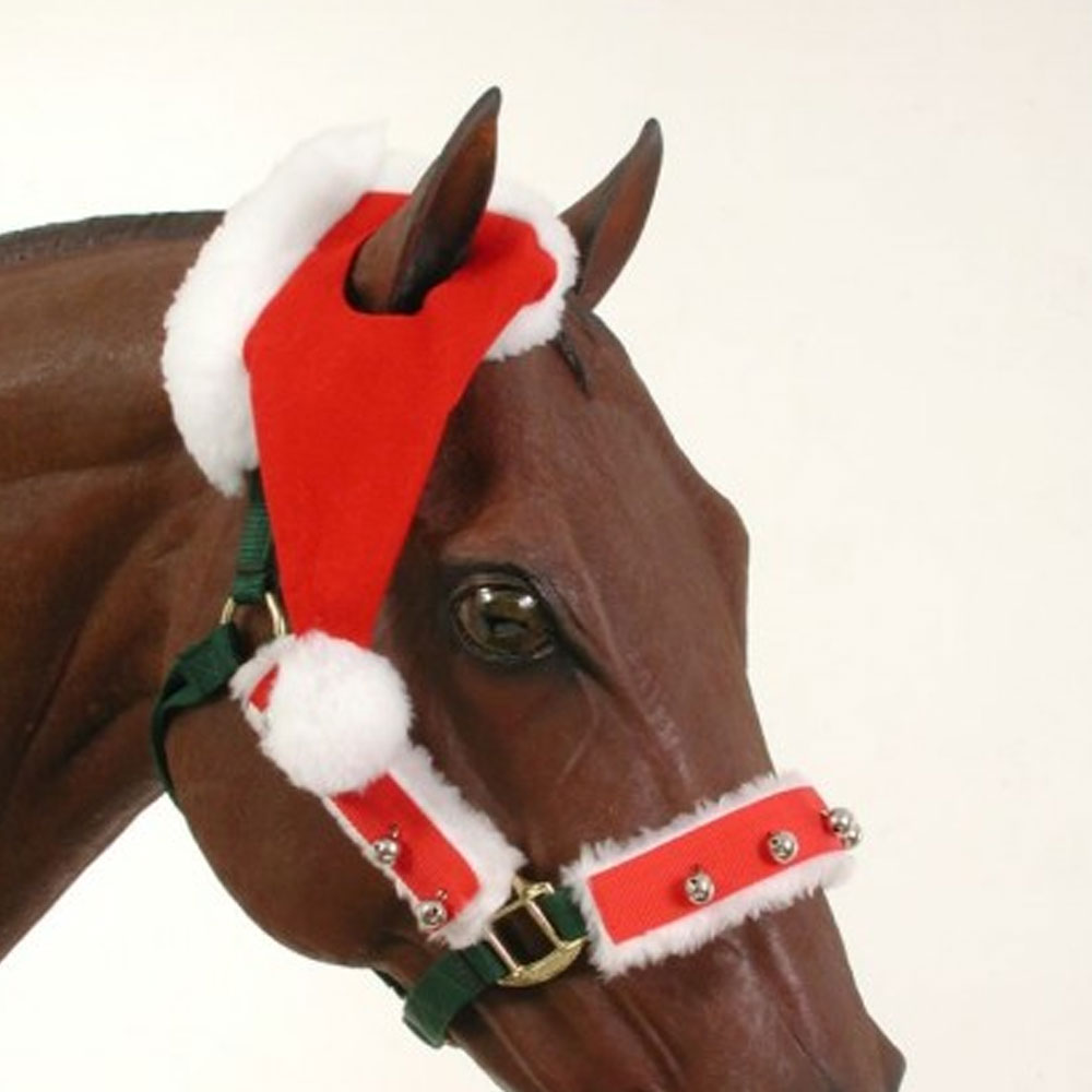 Single Ear Santa Hat