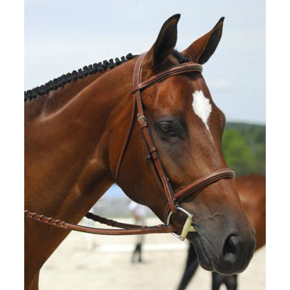 Beval Conquer Mono Crown Fancy Padded Bridle