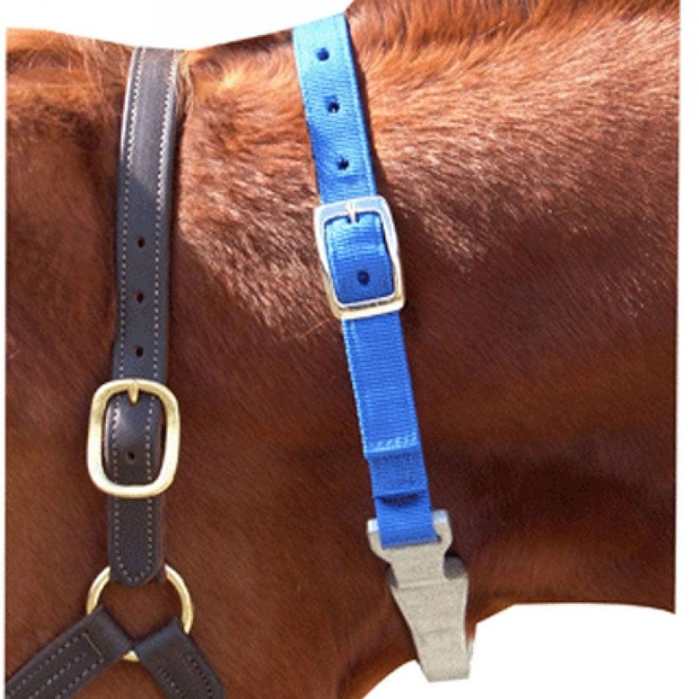 CanPro Nylon Cribbing Collar