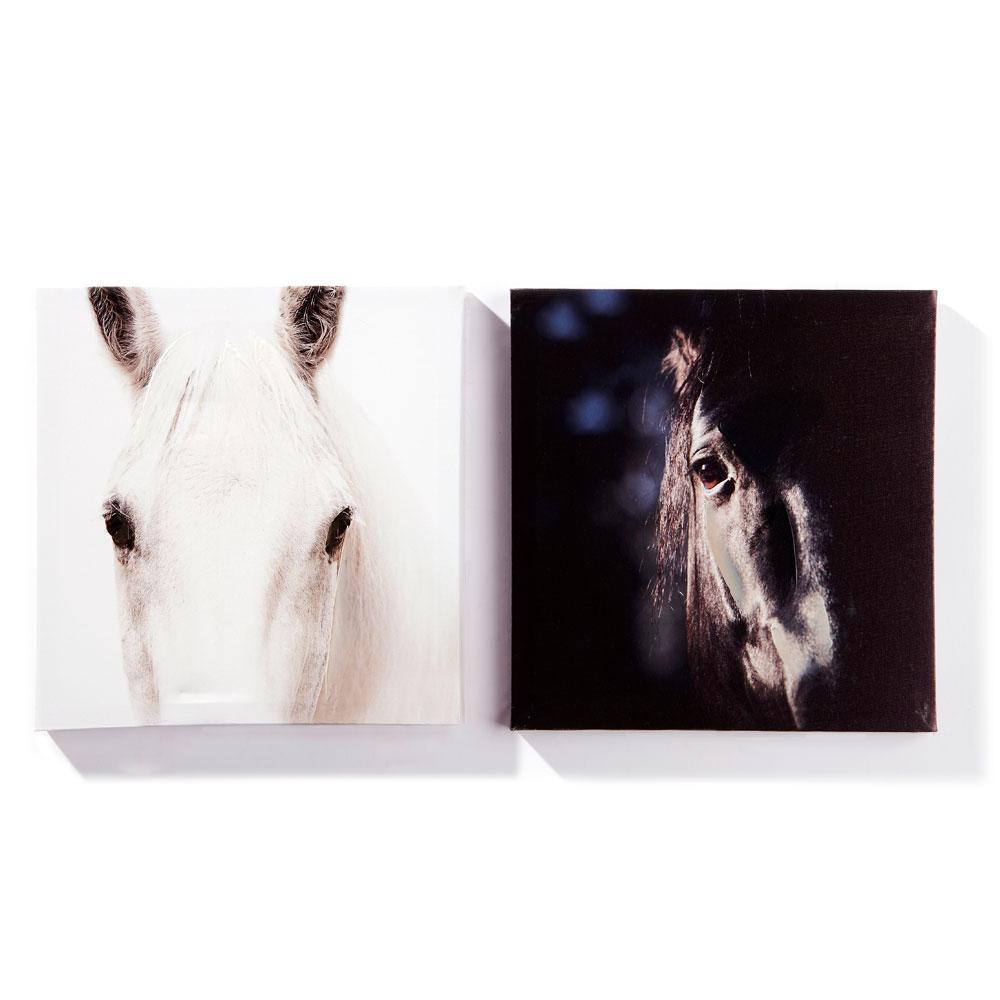 Canvas Prints - Set of 2
