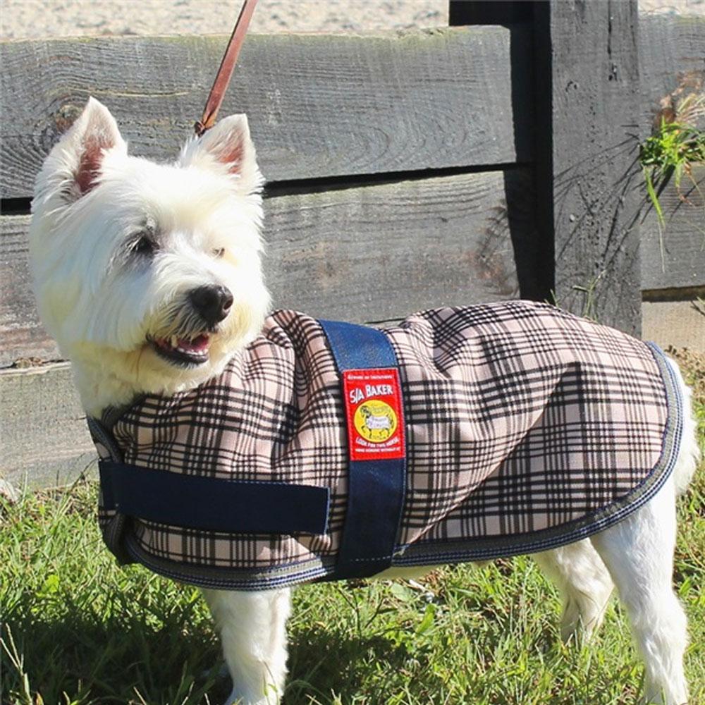 Curvon 5/A Baker Dog Blanket