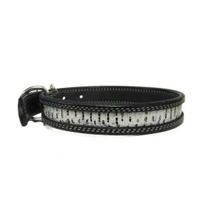 Dog Collar with Snakeskin Windowpane