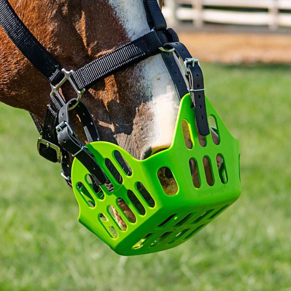 GreenGuard Grazing Muzzle