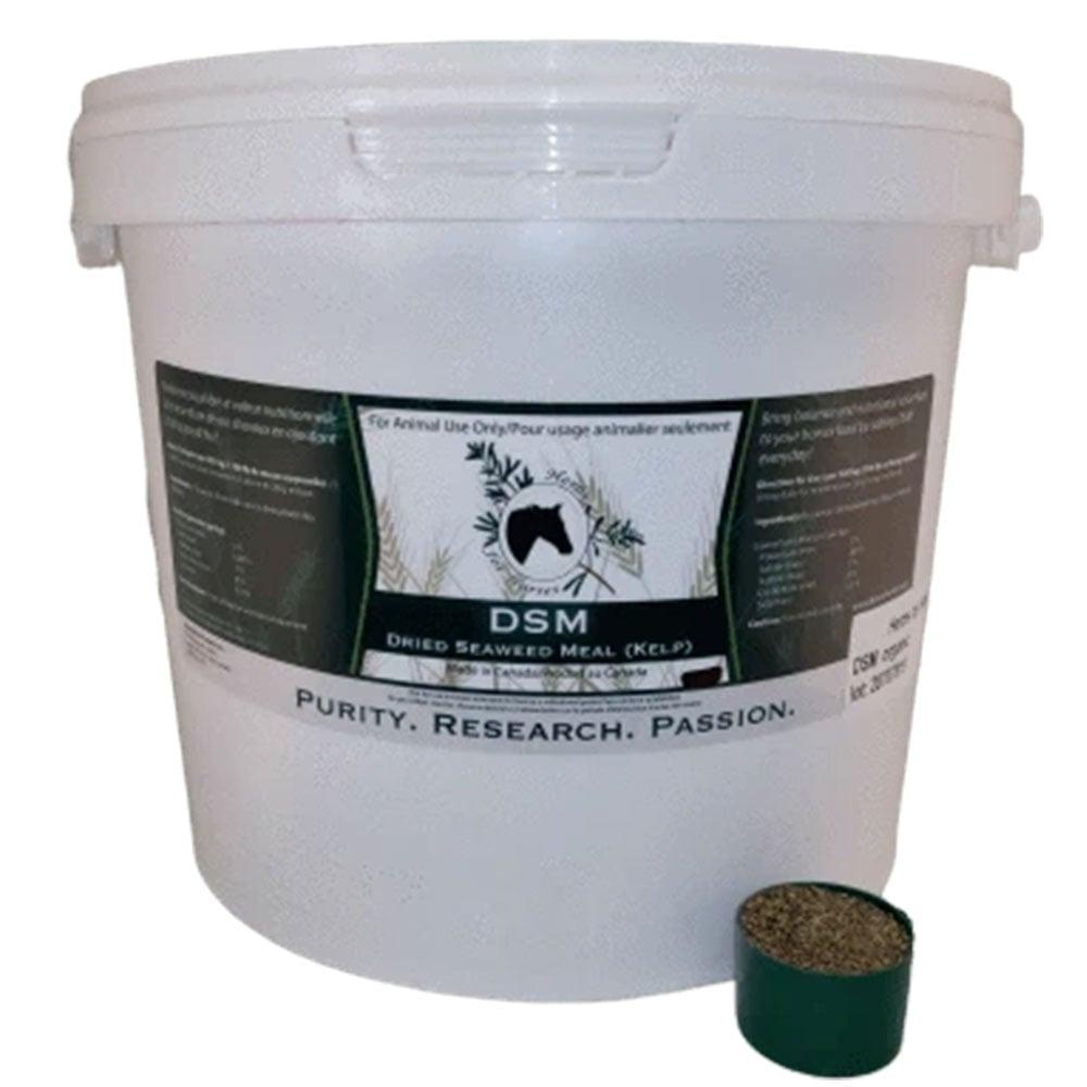 Herbs for Horses DSM Kelp - 5 kg