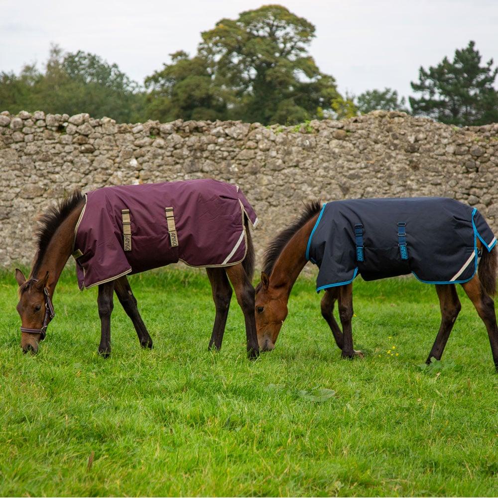 Horseware Amigo Foal 200g Medium Turnout