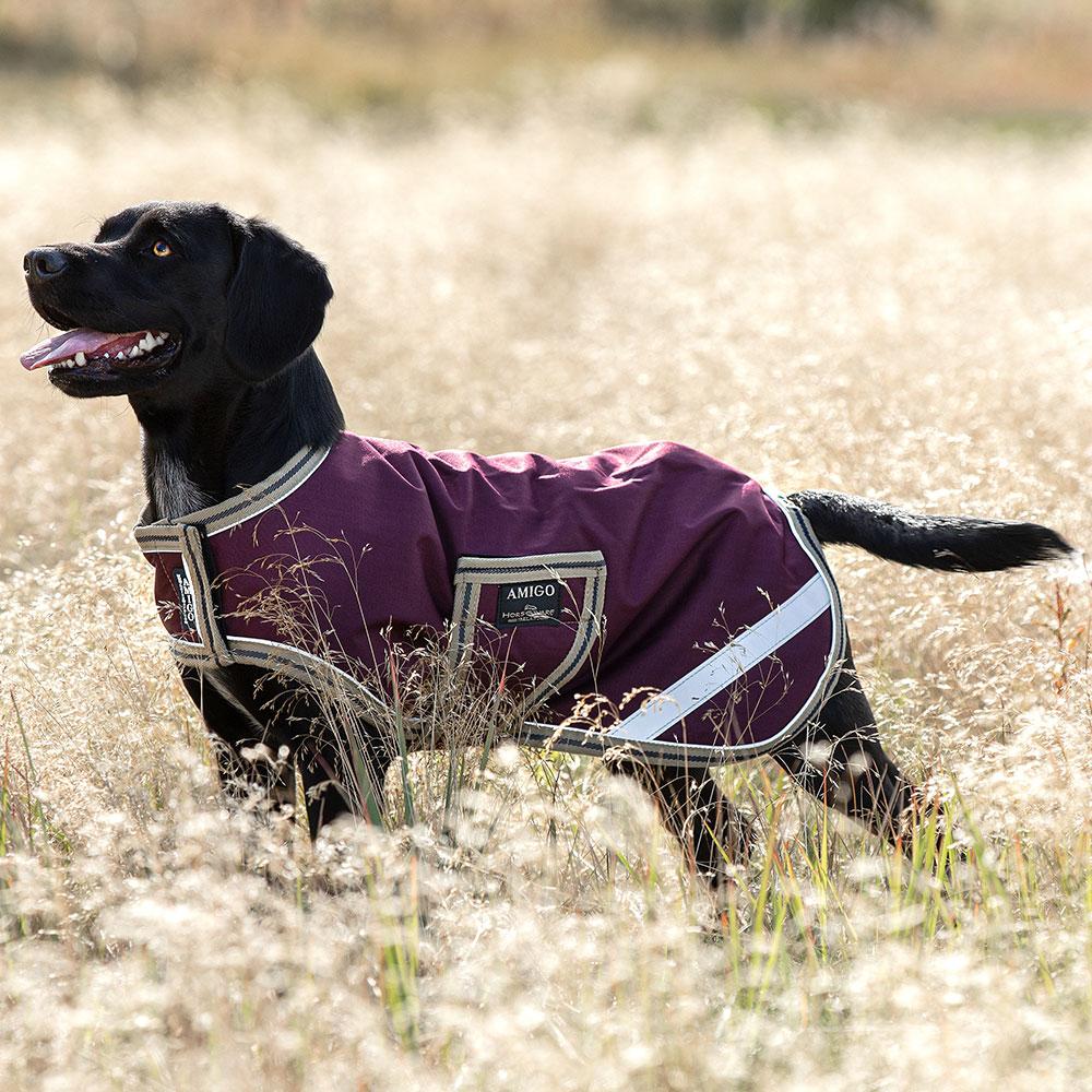Horseware Amigo Ripstop Waterproof Dog Coat
