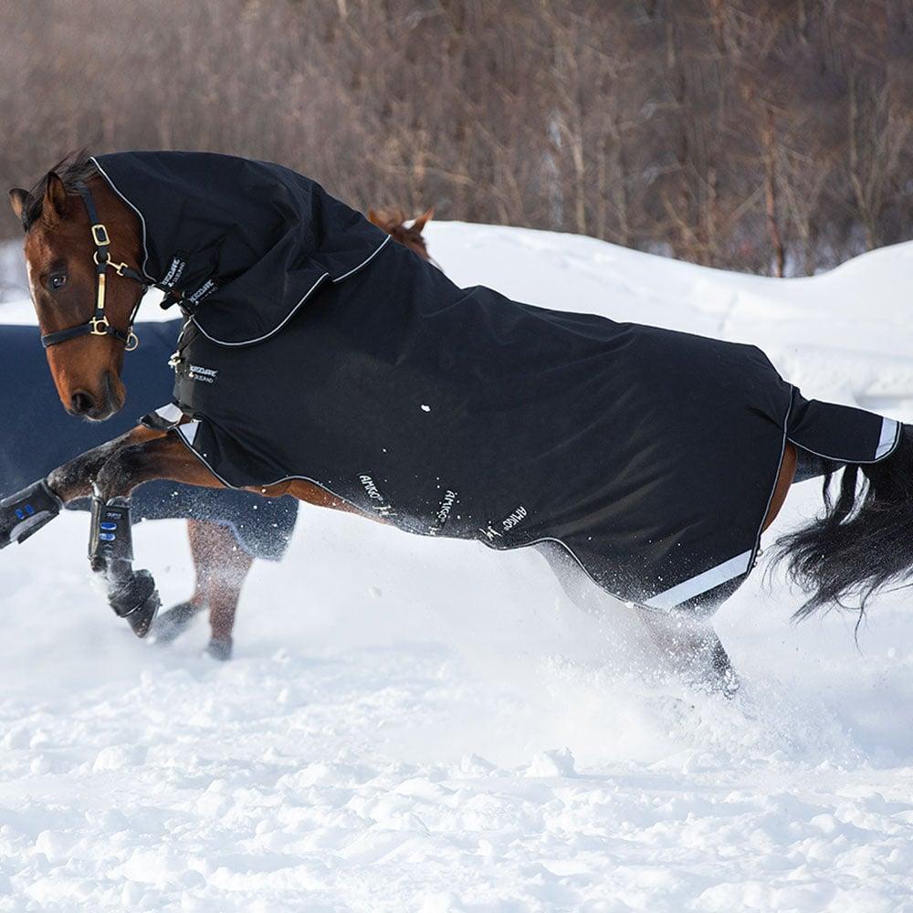 Horseware Amigo Super Bravo Plus 250g Medium Turnout Blanket