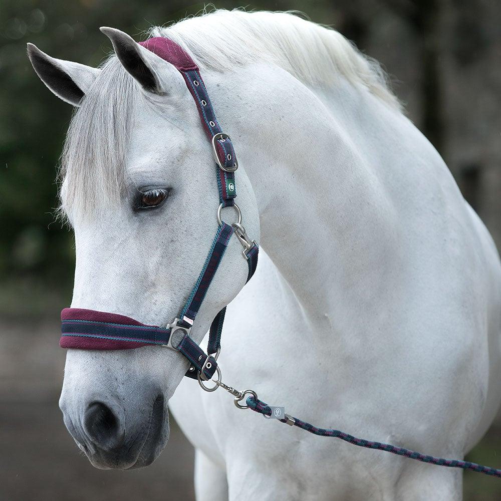 Horseware Rambo Padded Halter