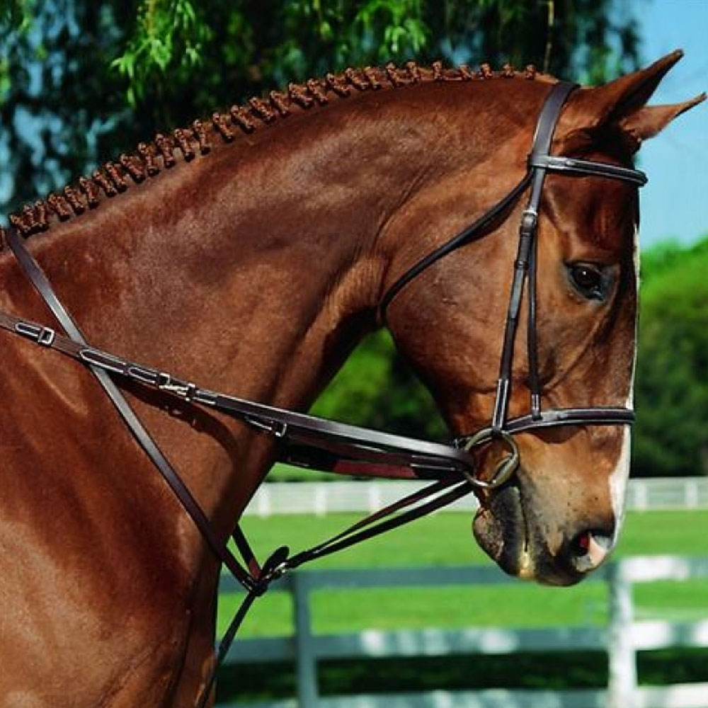 Imperial German Martingale