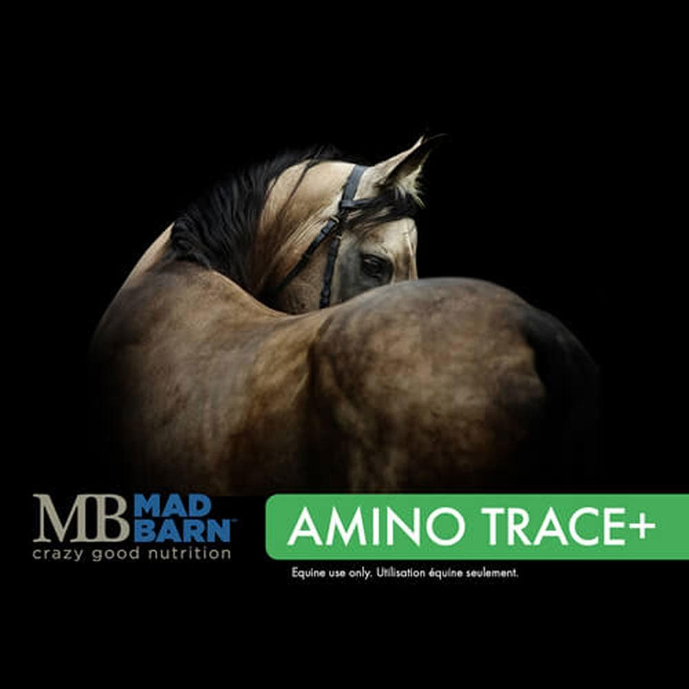 Mad Barn Amino Trace+ - 20 kg