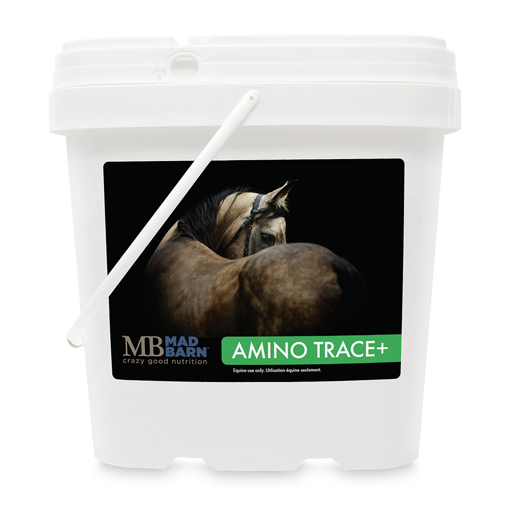 Mad Barn Amino Trace+ - 5 kg