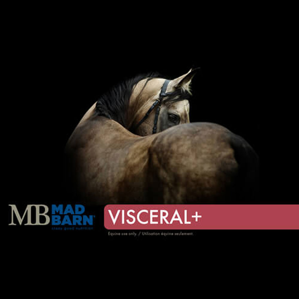 Mad Barn Visceral+ - 20 kg