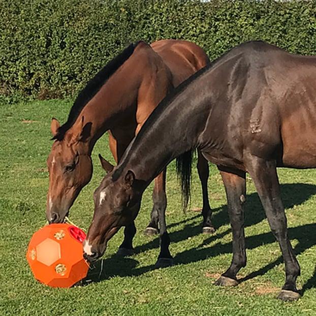 Parallax Hay Play Ball