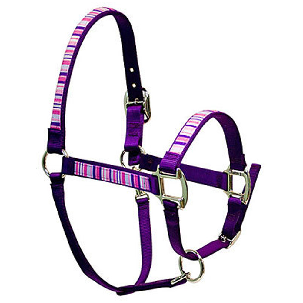 "Red Haute Horse ""Purple & Pink Stripe"" Elite Halter"
