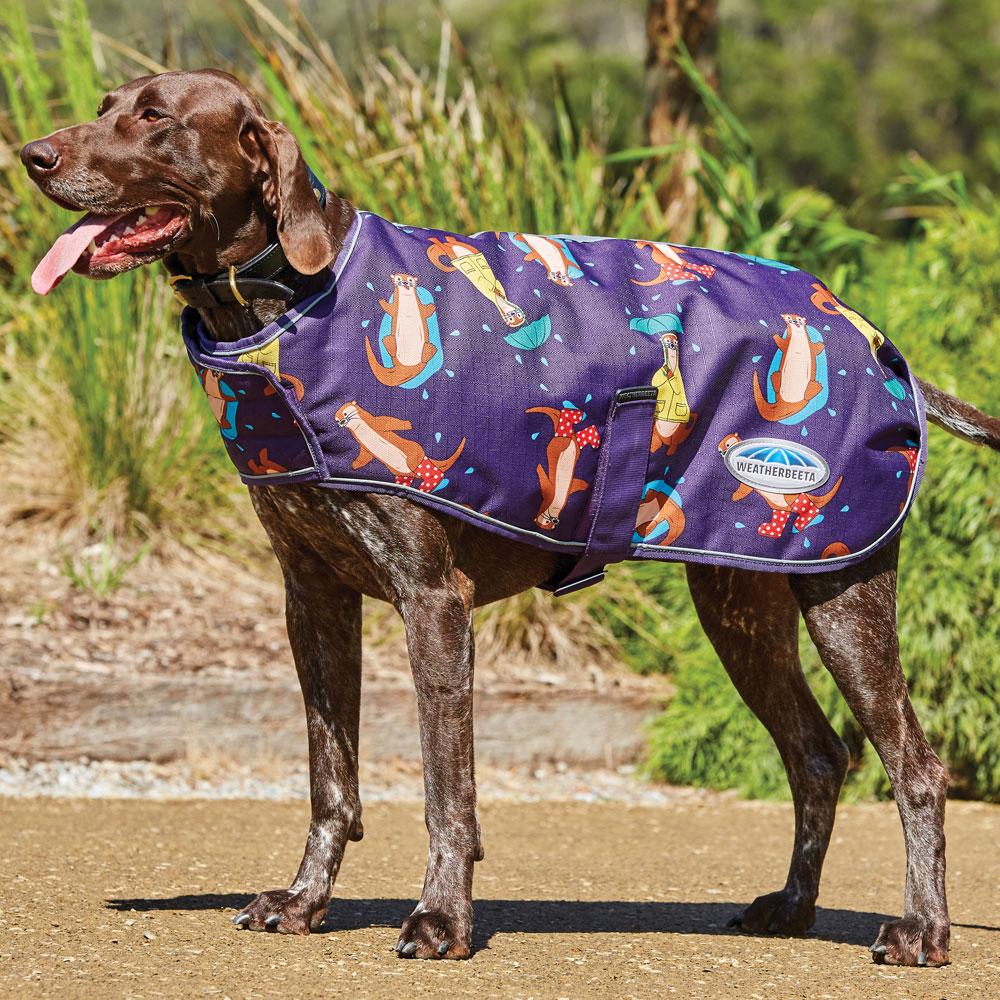 WeatherBeeta ComFiTec Premier Free Medium 220g Dog Coat