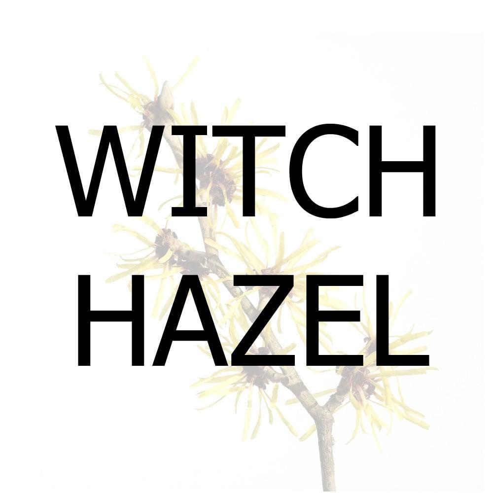 Witch Hazel - 3.78 L