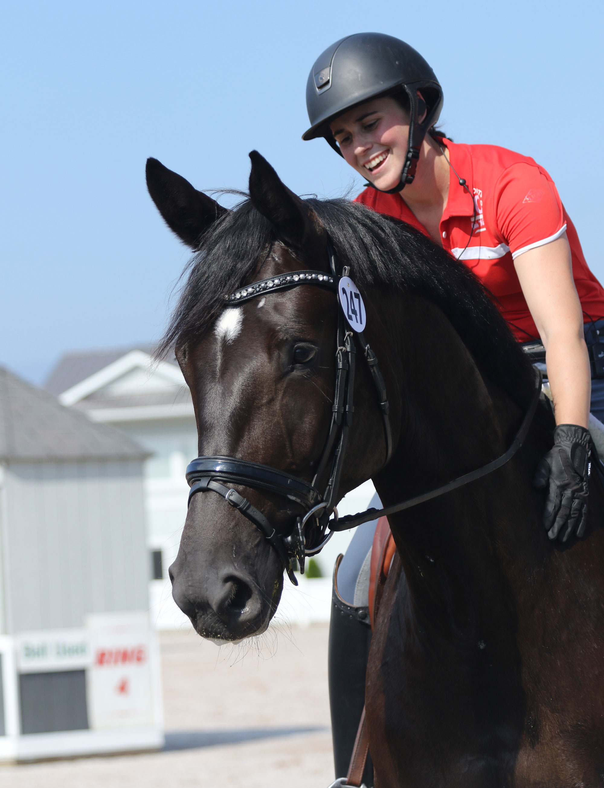 Why You Need to Wear a Helmet While Riding a Horse