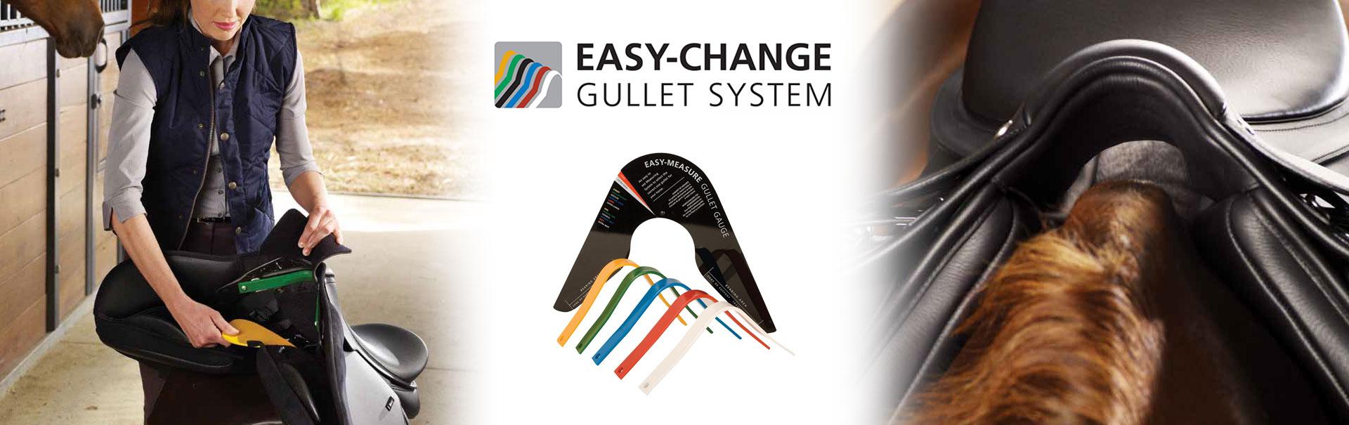 Easy-Change Gullet System