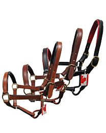 Bahr's Patent Padded Halter with Snap