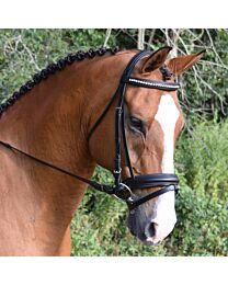 Black Oak Larkspur Dressage Bridle