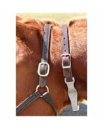 Leather Cribbing Collar