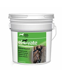 Elevate Maintenance Powder by Kentucky Performance Products