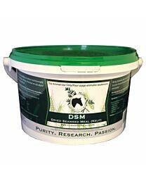 Herbs for Horses DSM Kelp