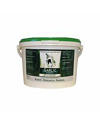 Herbs for Horses Garlic