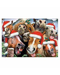 """Horsing Around"" Holiday Greeting Cards"