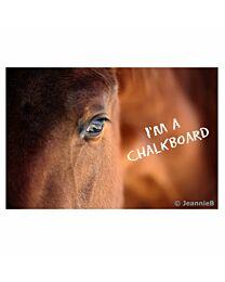 "JennieB ""Horse Eye"" Photo Chalkboard"