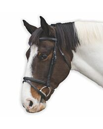 Loveson Leather Bridle