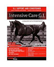 McIntosh Intensive Care GI