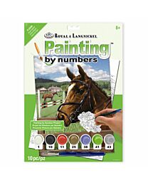 """Royal & Langnickel """"Equine Paddock"""" Paint by Numbers Paint Set"""