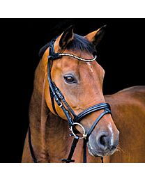 Stubben Freedom Bridle with Magictack