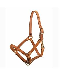 Tory Leather Foal Halter