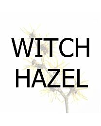 Witch Hazel - 500 ml