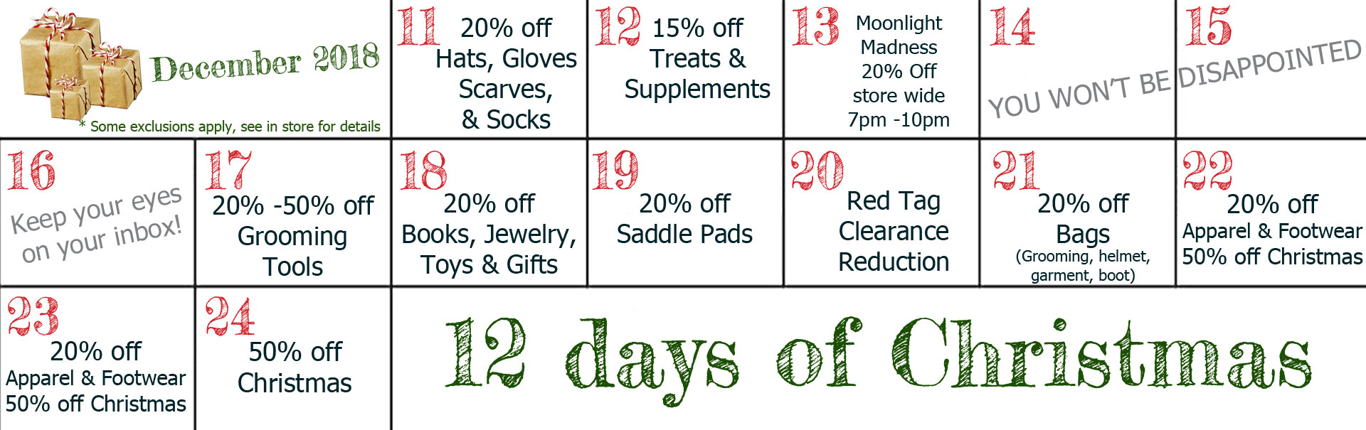 12 Days of Christmas Promotion